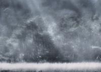 OLYMPUS E-M1で撮影した(美しきこと枯野にも)の写真(画像)
