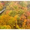 秋のetude