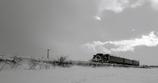 雪原津軽鉄道