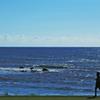 海岸散歩。。♪