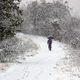 初雪積もる朝の堤防  DSC_5468
