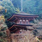 晩秋の浄瑠璃寺三重塔(国宝) DSC_5861
