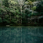 SONY NEX-7で撮影した(御池)の写真(画像)