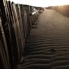 堆砂垣が続く