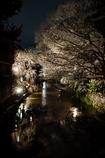 京都 白川の雪夜