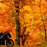 バイクのある風景「禾火」