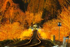 「春」行列車