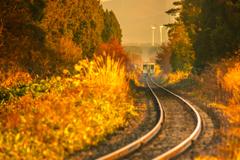 冬行列車 I