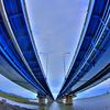 お魚さん吉野川大橋を見上げて