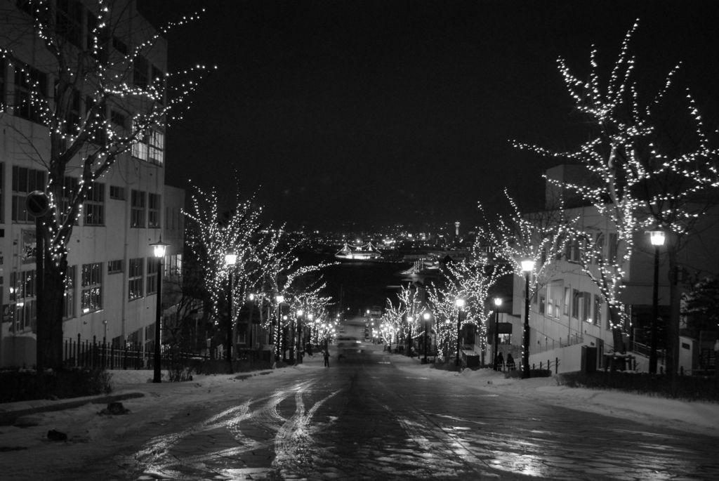 八幡坂(冬)