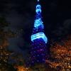 秋の東京タワー夜景