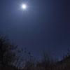 月光を纏って