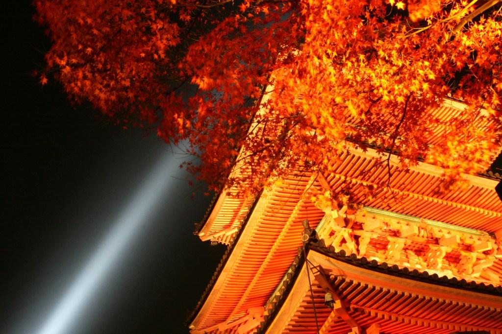 light up Japanese building