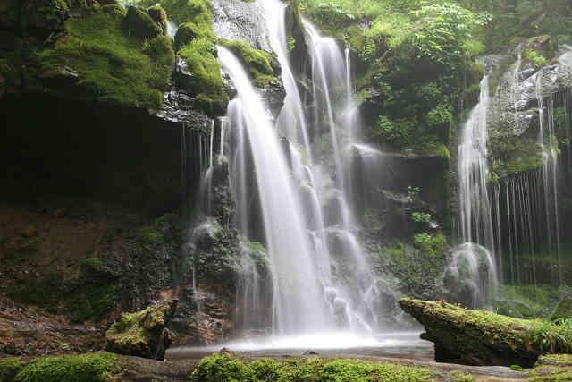 別名「苔滝」