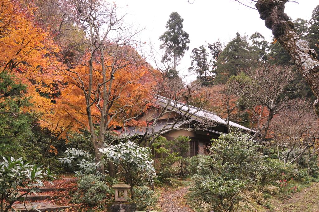 鎌倉 062