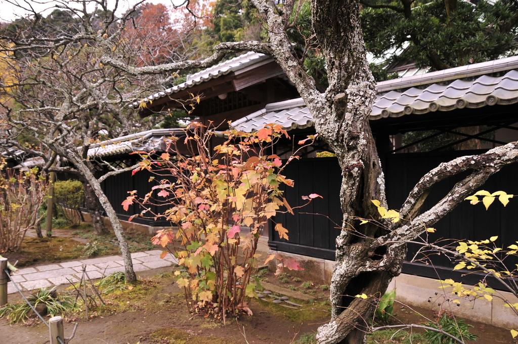 鎌倉 056