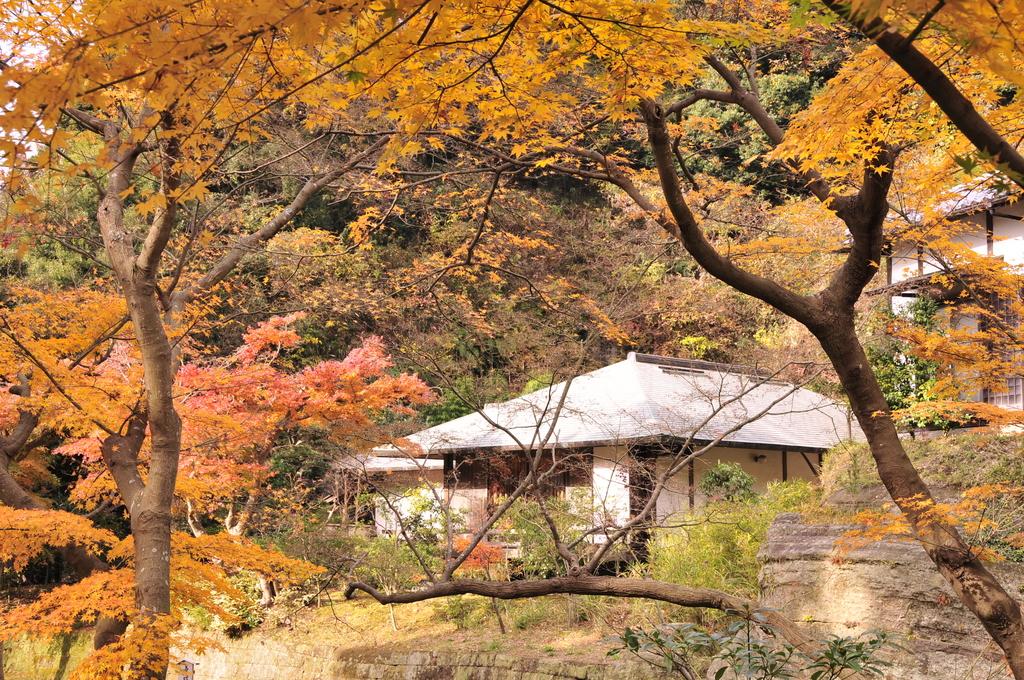 鎌倉 034