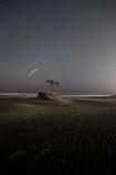 星降る砂浜