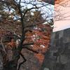 晩秋の江戸城