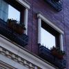 プランタのある窓