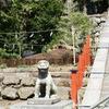 【鎌倉】「鶴岡」八幡宮の例のイチョウ