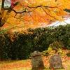【京都】化野念仏寺にて