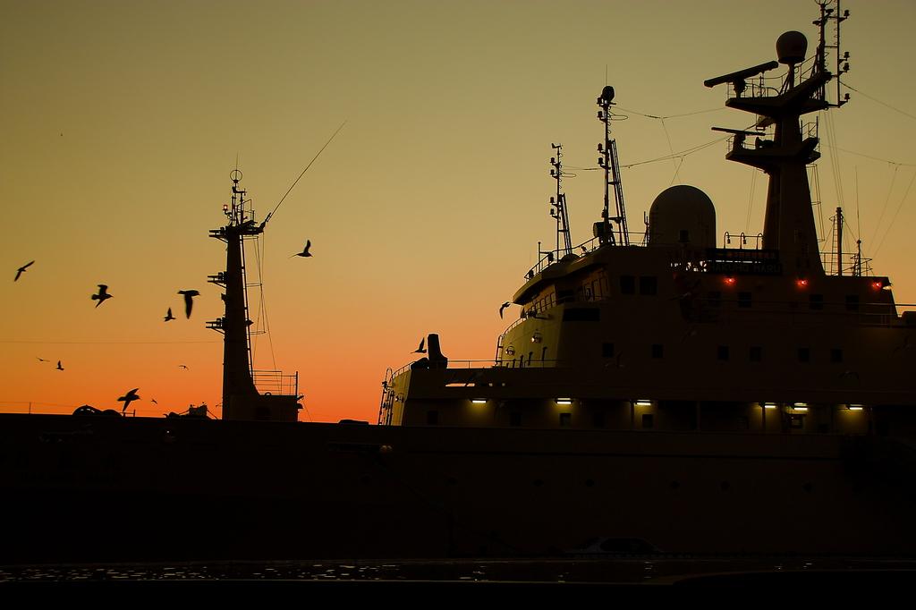 夕日に船とウミネコ