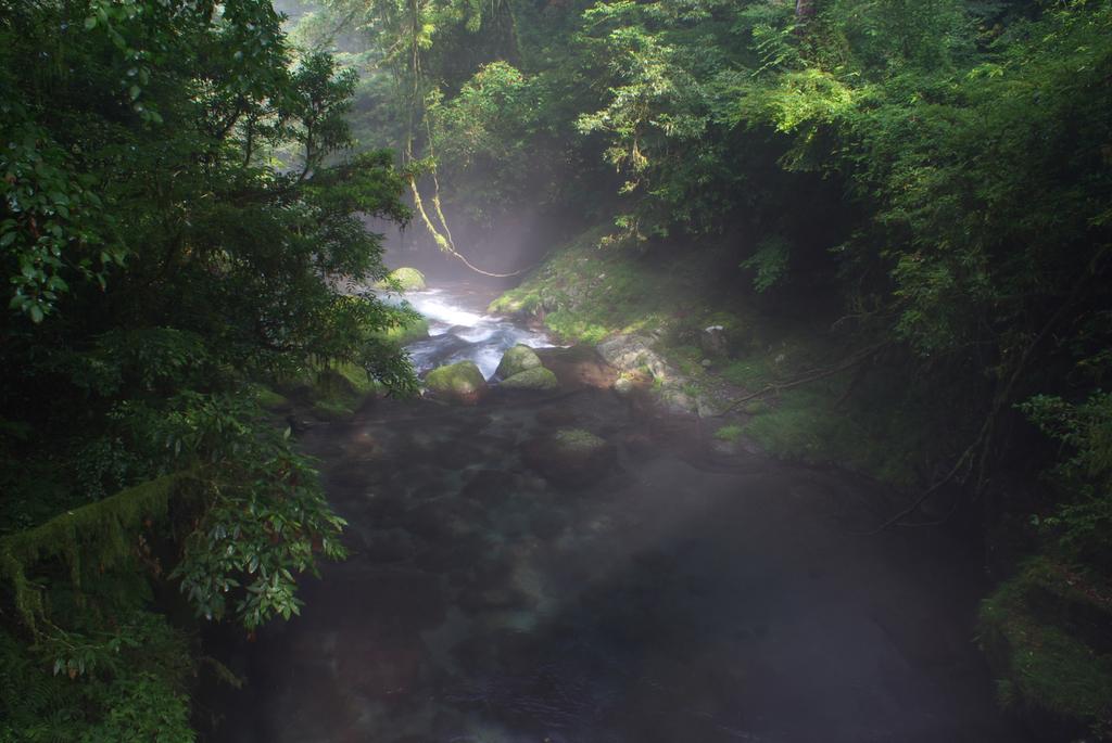 朝の渓谷2