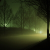 霧とヘッドライト