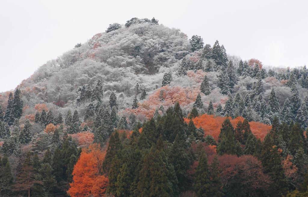 サクッと新雪