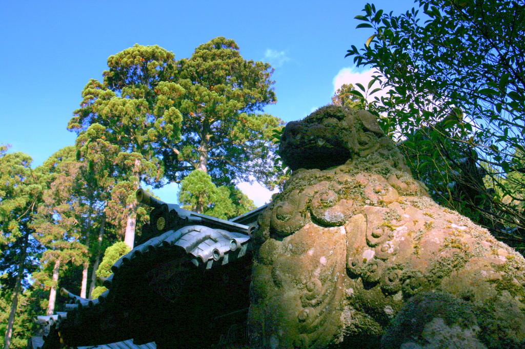早朝の箱根神社