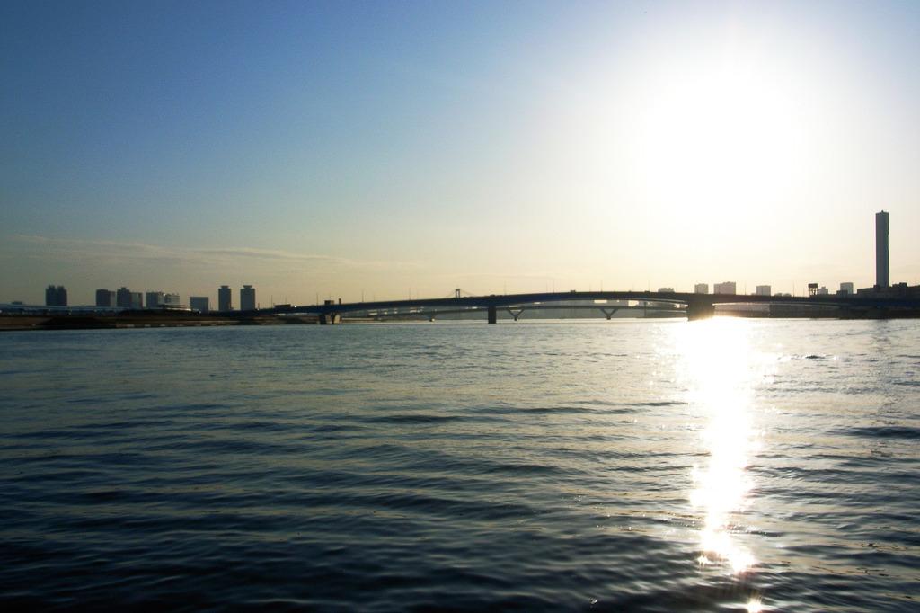 東京湾だわん