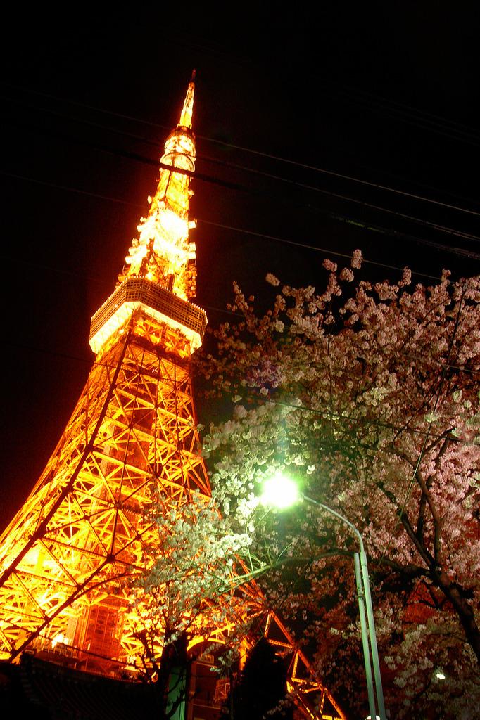 東京タワー with S