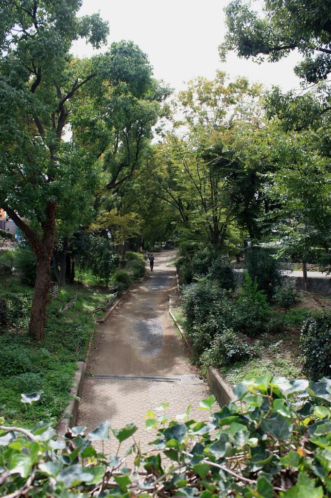秋への小道