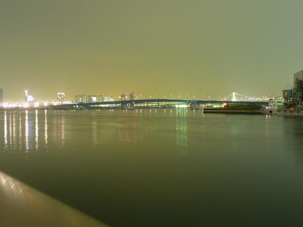春海鉄道橋付近(20081031-0022)