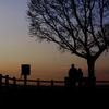 夕日を望む老夫婦