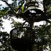 TREE HOUSE☆