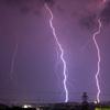 へぇ、ペルセウス流星群って雷みたいな感じで降ってくるんですね。