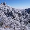 霧氷~ライオン岩~