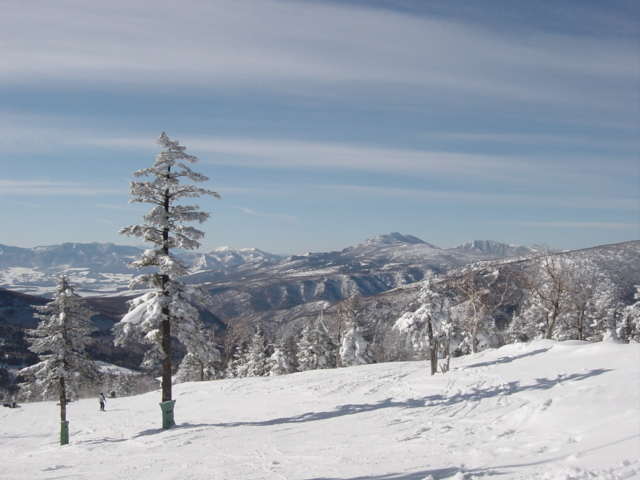 ★万座 スキー場 雪景色1