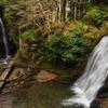 養老渓谷 幻の滝