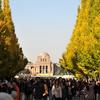神宮外苑の銀杏祭り