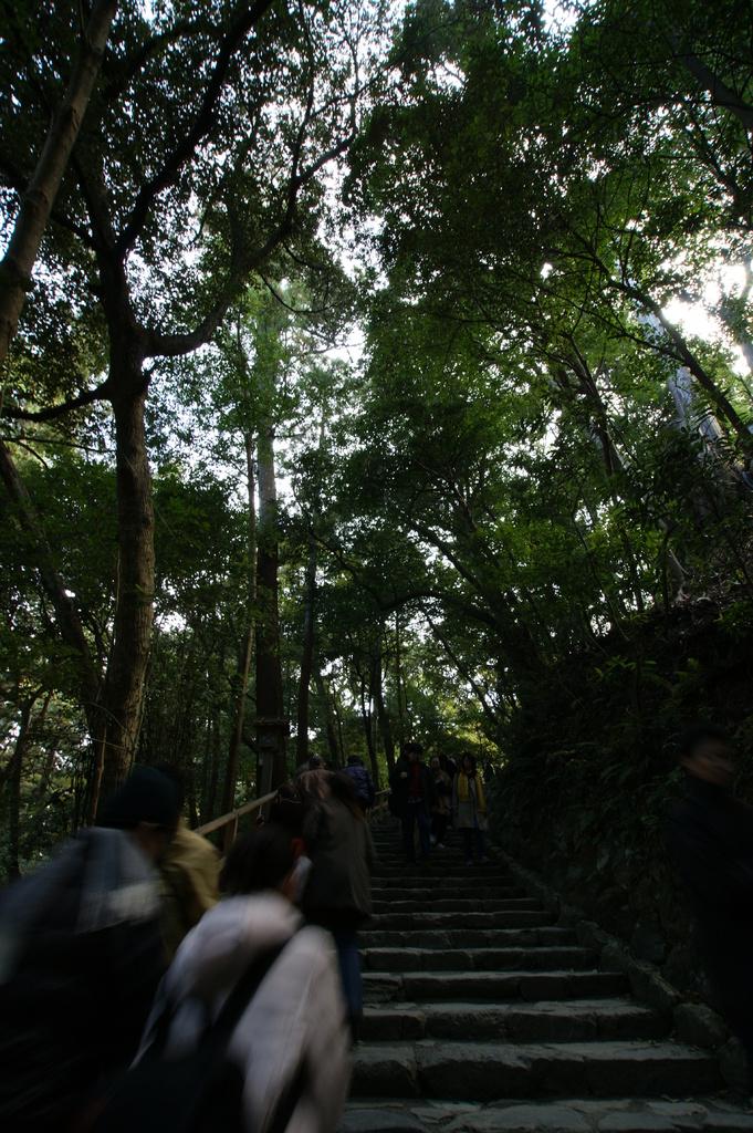 参拝の階段