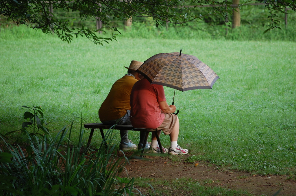 公園で涼む