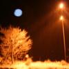 蒼い月の国