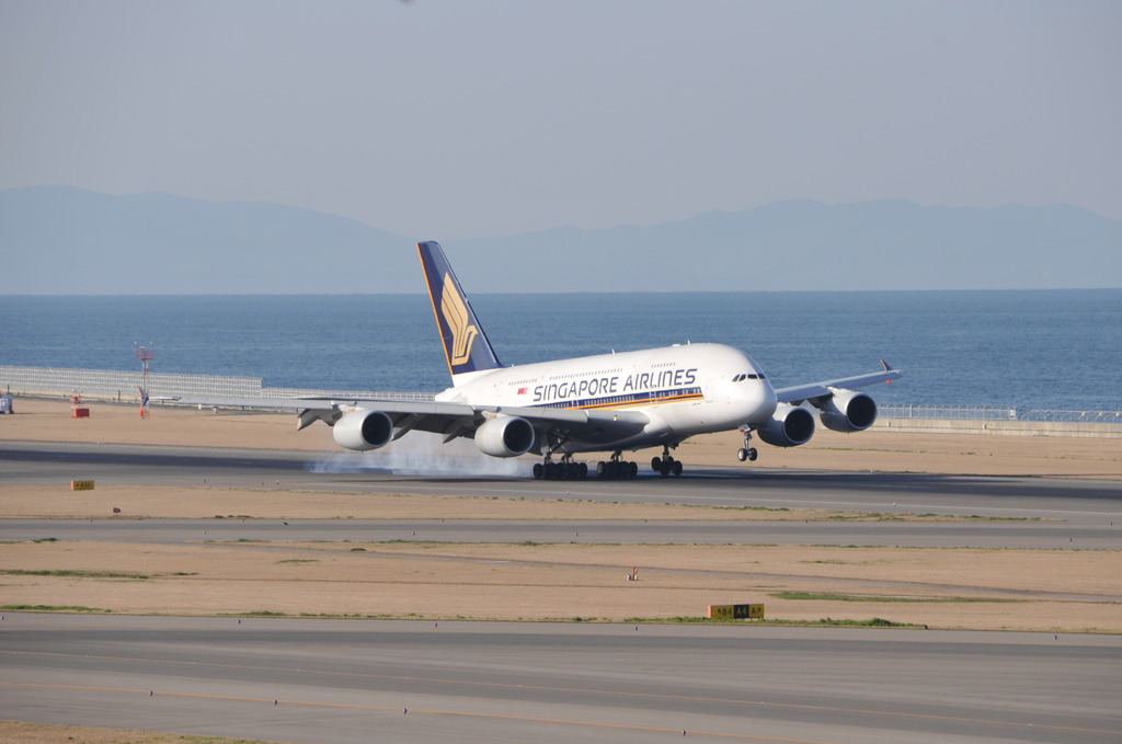 セントレア A380