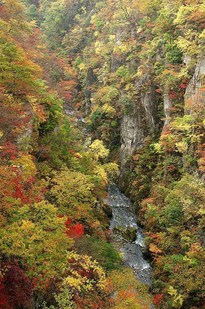 鳴子峡渓谷1_R