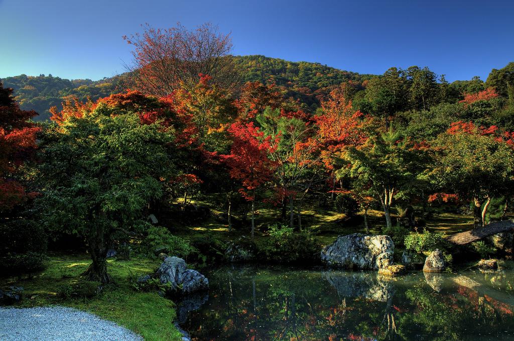 嵯峨野に秋