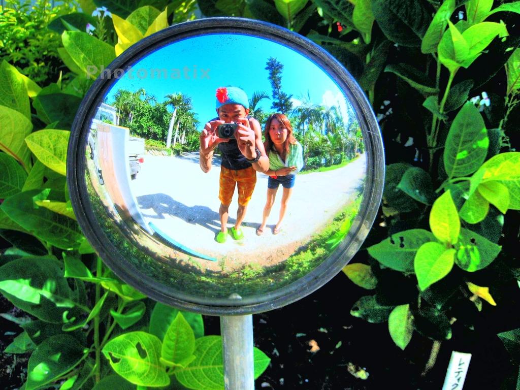 西表島旅行