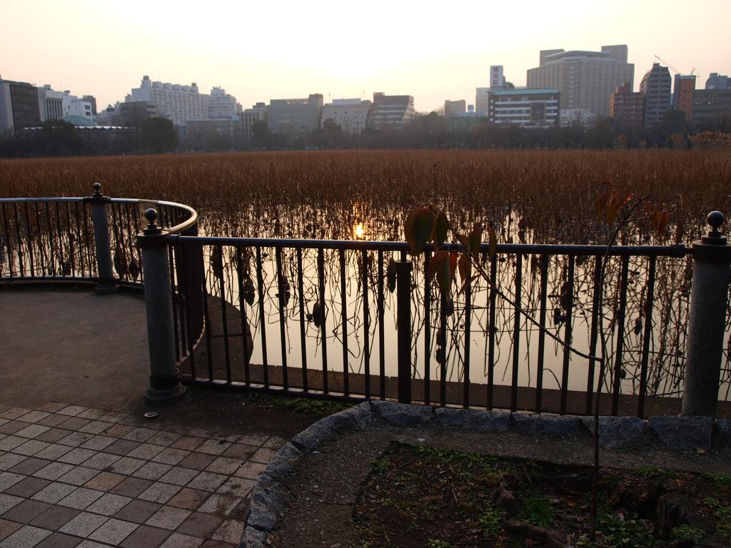 2009_0205、上野